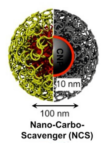 nano-carboscavenger particles are small