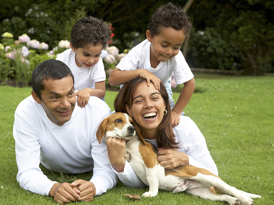 family lifestyle portrait of a mum and dad with their two kids and their dog having fun outdoors