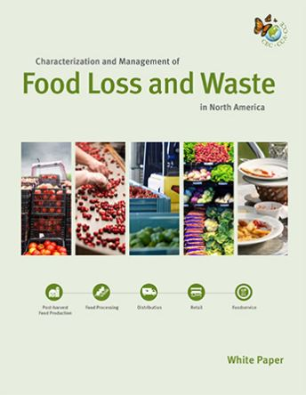 Image of white paper cover, featuring multiple images of produce at various points along the supply chain as well as icons representing post-harvest food production, food processing, distribution, retail and foodservice