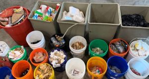 Multiple bins and buckets, each containing a different type of waste identified in the waste audit